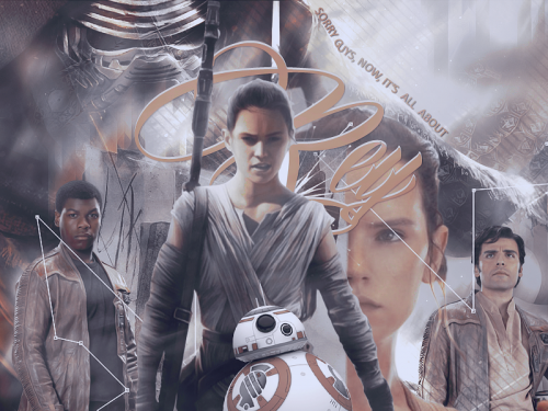 all_about_rey.png