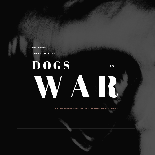 DOGS OF WAR  P4Plo6